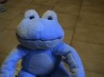 medium_grenouille_bleue.jpg